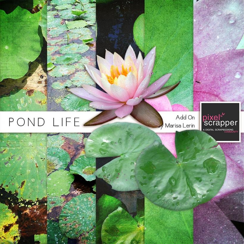 Pond Life Add-On Mini Kit photo realistic pond lilies lily pad green pink