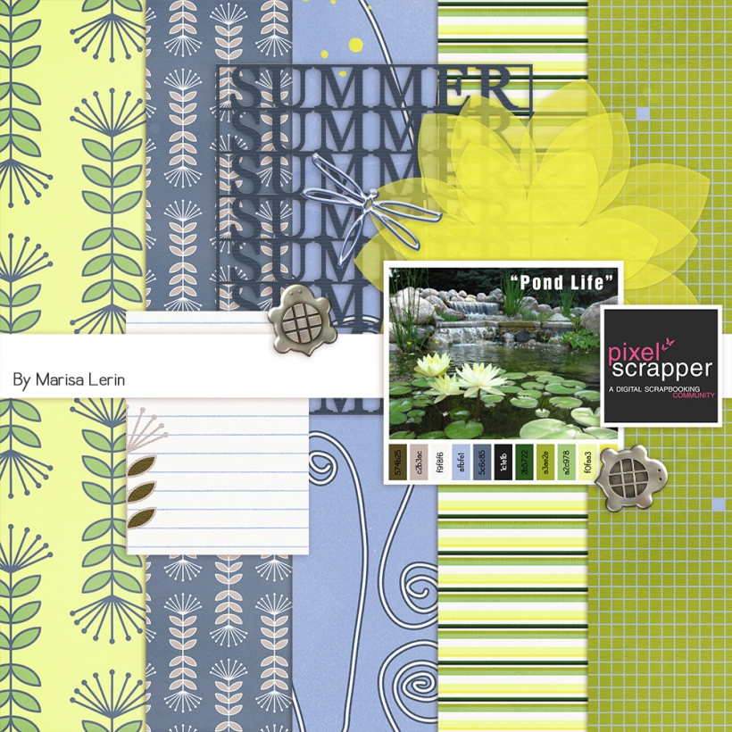 PS June 2013 Blog Train spring pond animals blue green